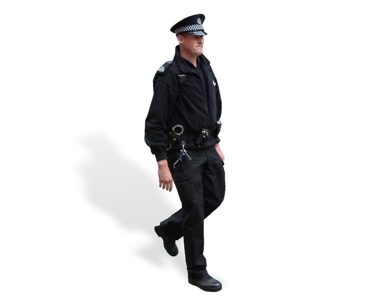 Typ strażnika