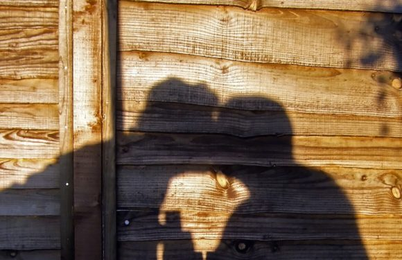 Czy można mówić o prywatności mieszkając z rodzicami?